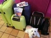 parti voyage OUI.sncf Côte d'Azur avec toutou