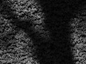 sombre film