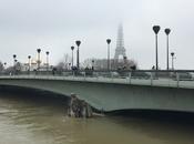Haute Seine