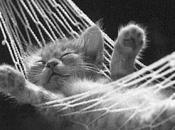 Méditer pour bien dormir remède contre insomnies