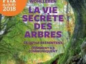 secrète arbres Peter Wohlleben