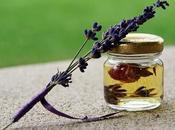 Qu'est-ce l'huile essentielle lavande vraie comment l'utiliser pour gérer votre stress?