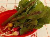 Première récolte légumes printemps avril, dans nord France (vidéo)