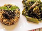 Pesto orties, asperges jardin fleurs chou (Vegan)