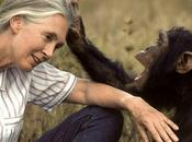Journée terre avec Jane Goodall