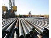 Cameroun Cinq freins l'industrialisation.
