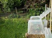 reste toujours place pour nouveaux aménagements jardin
