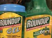 Pesticides trois nouvelles études confirment dangerosité glyphosate... doses autorisées