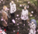 saison annoncée pour l'animé Tokyo Ghoul:RE