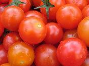 petits secrets pour récolter plein tomates cerises