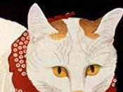 Chat dans cercueil, Koike Mariko