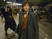 MOVIE Fantastic Beasts nouveau trailer dévoilé
