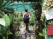 Parc visiter Guadeloupe domaine Valombreuse, parc loisirs.
