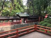 calme magnifique sanctuaire shinto Nezu-jinja Tokyo