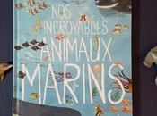 incroyables animaux marins Yuval Zommer