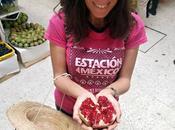 J'ai testé: food tour Mexico
