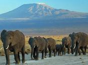Voyage responsable Kenya autrement