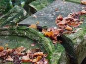 ballade dans cimetières dormants Caen