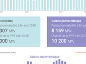 filière solaire France
