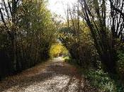 Magnifique automne anglais (photos).