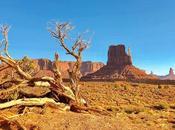 Comment bien préparer votre visite parc national Grand Canyon
