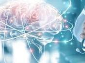 DURÉE Plus dans cortex corps