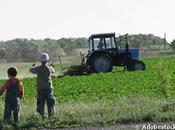 centaine pesticides détectés dans maisons écoles zone rurale wallonne