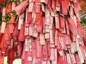 Porte bonheurs attachés arbre