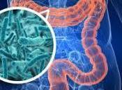 microbiote nouveau-ne