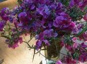 Anatomies désirantes, bouquet, fenêtre chorale