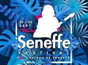 Seneffe Festival, alliance parfaite Cover Artistes originaux! (1/3)