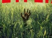[CRITIQUE] Dans hautes herbes