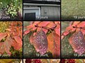 Comment récupérer photos effacées votre iPhone iPad