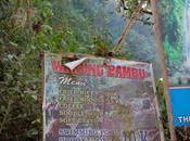 cascades Sekumpul avec Gede Rajendra Erwin Kurniawan