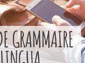 Leçons grammaire MosaLingua quand devez-vous vous lancer
