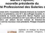 Marion Papillon- nouvelle présidente Comité Professionnel Galeries d'Art Décembre 2019
