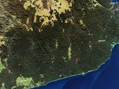 Incendies Australie pays dévasté flammes