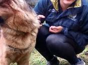 Confiez bien-être animaux vétérinaires