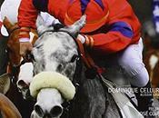 Télécharger Hippisme. grand livre courses chevaux (French Edition) (Dominique Cellura) Francais