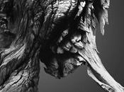 [Photographie] animaux étranges Jonatan Maldonado