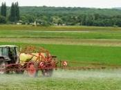 épandages agricoles pourraient contribuer propagation Covid-19