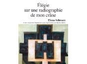 (Anthologie permanente), Elena Schwarz, Elégie radiographie crâne