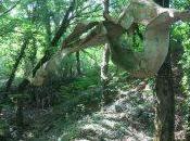 Parcours sculptures, Malans (70)
