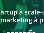 startup scale-up enjeux marketing prioriser
