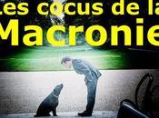 cocus Macronie