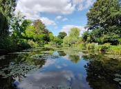 jardin Monet Giverny entrer dans tableau