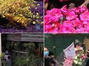 Bangkok Talat Takhe: retrouvez beauté passé