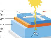 Techniques recyclage cellules photovoltaïques
