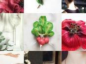 neuf publications vous avez préférées Instagram 2020