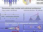 #Cell #cancer #génome #hétérogénéitéintratumorale Caractérisation l'hétérogénéité intra-tumorale partir génomes cancers humains